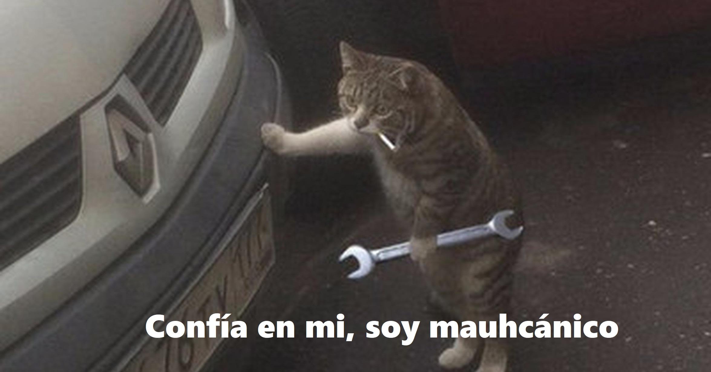 Gato mecánico