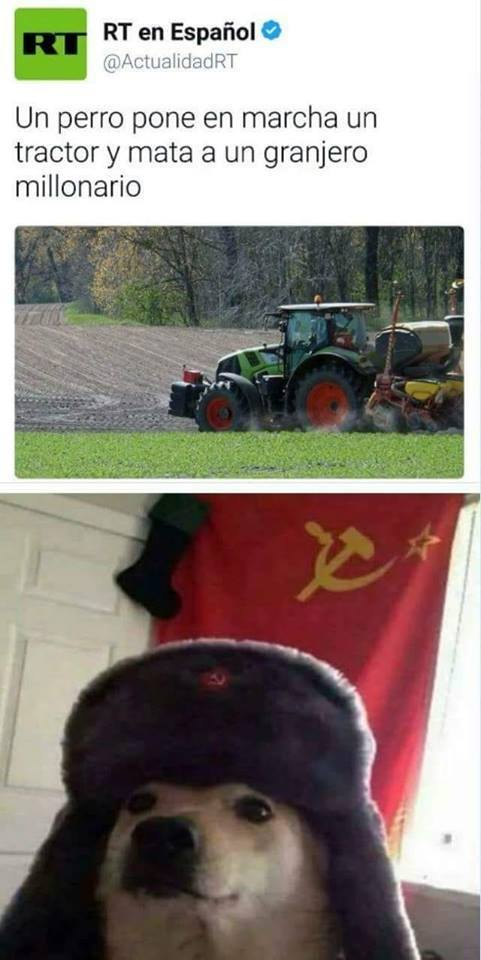 mata a un granjero millonario
