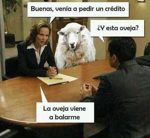 La oveja viene a balarme