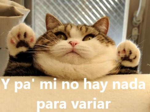 Fat and Furious A toda Grasa