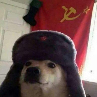perro comunista