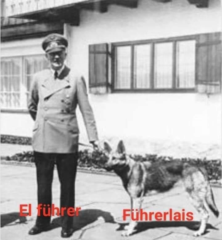 Fuhrerlais