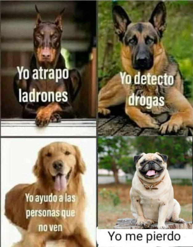 Tipos de perretes