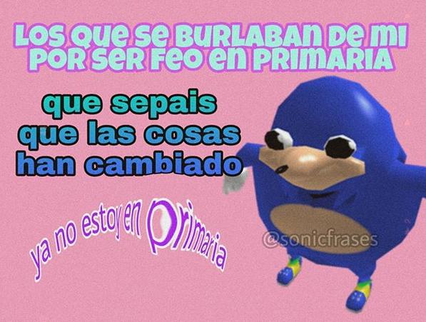 Sonic meme primaria