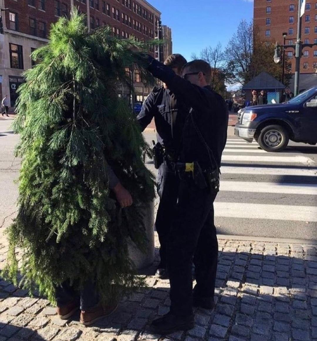 Policía pillando a disfrazado de árbol durante confinamiento