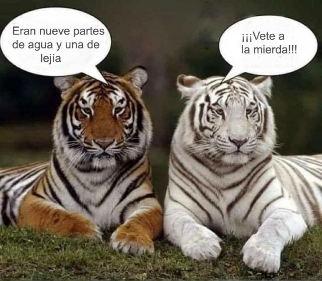 Tigre desteñido lejía