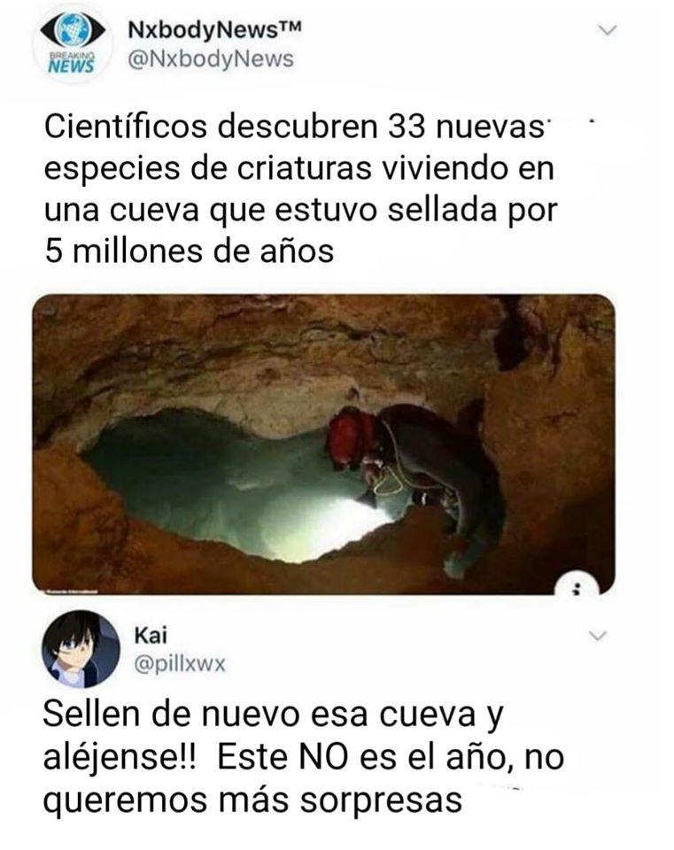 Descubren 33 nuevas especies en una cueva