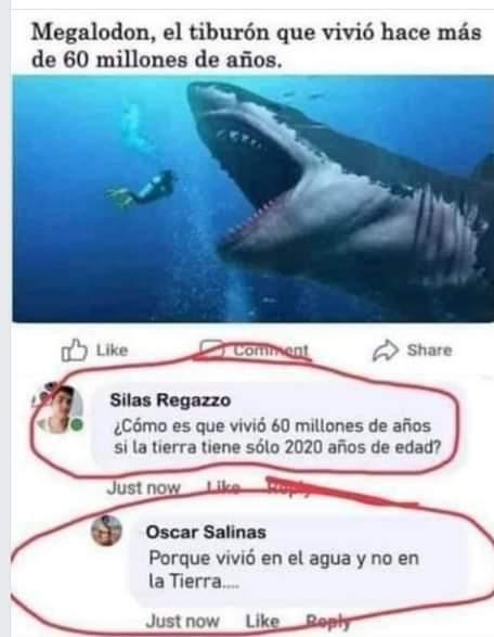 Tiburón 2020