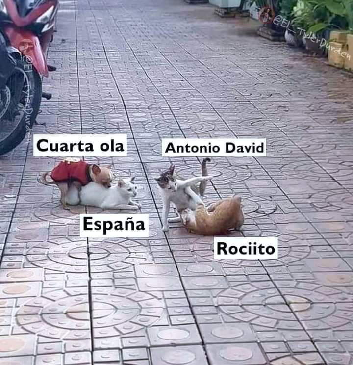 Cuarta ola Rociito